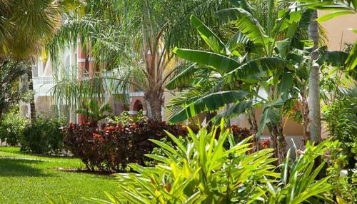 taino resort bahamas